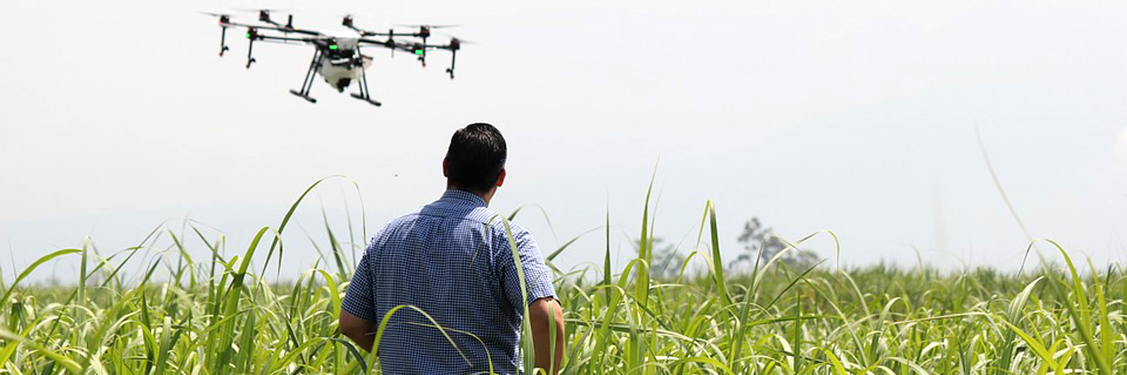 Agricultural Aerial Imagery